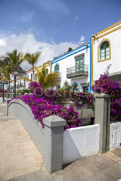 Stock photo: Houses in Gran Canaria