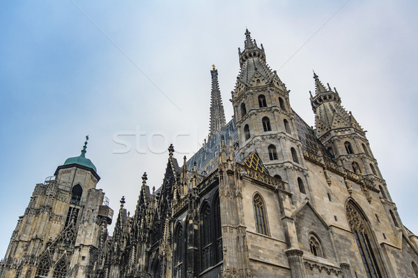 Detail of the Stephansdom cathedral in Vienna Stock photo © boggy