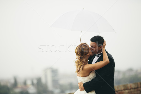 Wedding couple Stock photo © boggy
