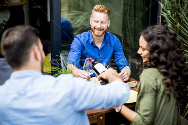Friends having outdoor garden party and drinking red wine Stock photo © boggy