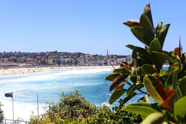 Foto stock: Praia · ver · Austrália · natureza · paisagem · verão