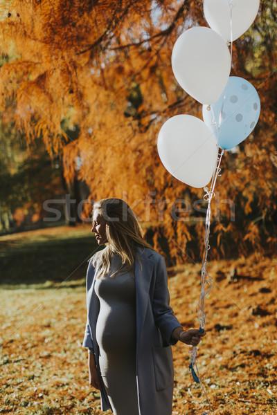 Foto d'archivio: Donna · incinta · autunno · parco · palloncini · mano · giovani