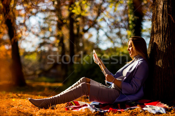 Foto d'archivio: Donna · incinta · seduta · autunno · parco · giovani · albero