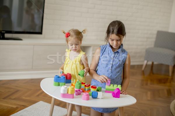 Kettő kislányok játék kockák szoba baba Stock fotó © boggy