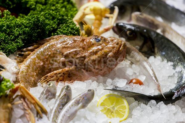морепродуктов рыбы льда ресторан группа промышленности Сток-фото © boggy