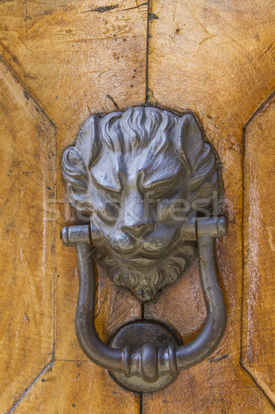 Detail of the vintage door knocker Stock photo © boggy