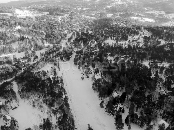 Légifelvétel Szerbia tél idő fa természet Stock fotó © boggy