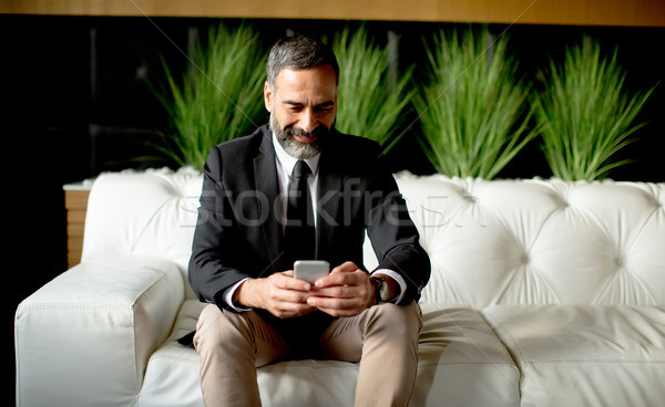 Middle-aged businessman using mobile phone Stock photo © boggy