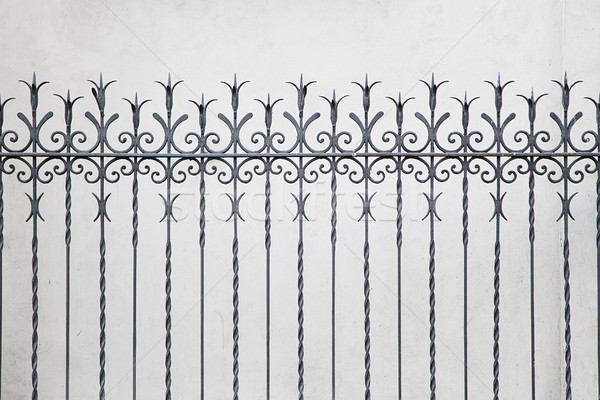 Forged decorative fence Stock photo © boggy