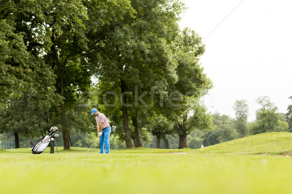 Golfer playing on beautiful golf course Stock photo © boggy