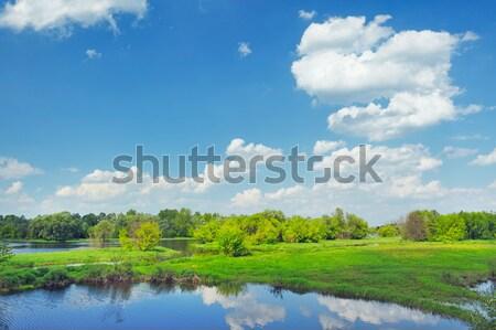 Sel nehir Polonya güzel su Stok fotoğraf © bogumil