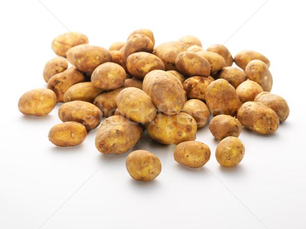 Grupo fresco novo batatas isolado branco Foto stock © bogumil