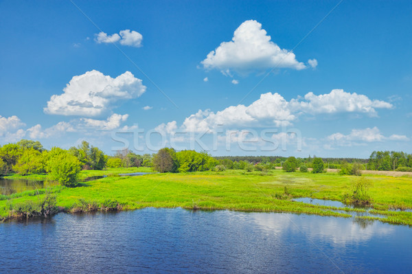 Spring Landscape with flood waters of Narew river, Poland. Stock photo © bogumil