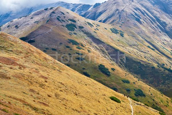 Touristes montagne sentier montagnes ouest fond Photo stock © bogumil