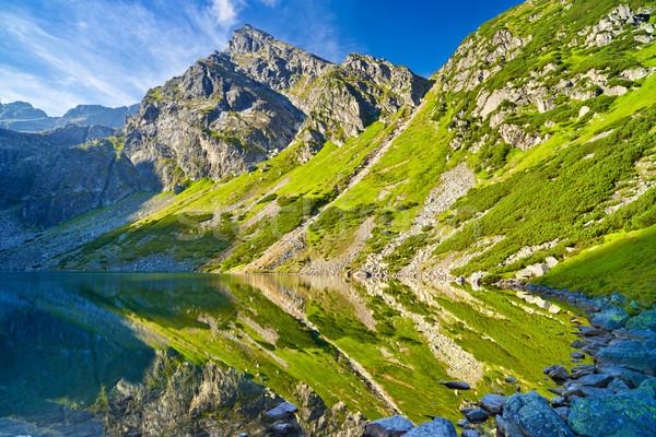 Yüksek dağlar manzara doğa göl gölet Stok fotoğraf © bogumil