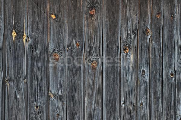 Foto stock: Velho · vintage · vertical · árvore · parede