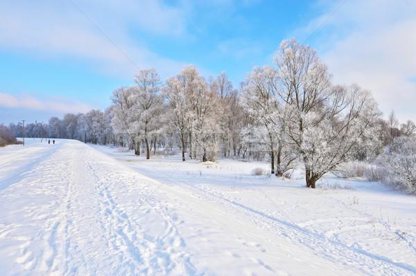 Panorama fiume valle bella inverno percorso Foto d'archivio © bogumil