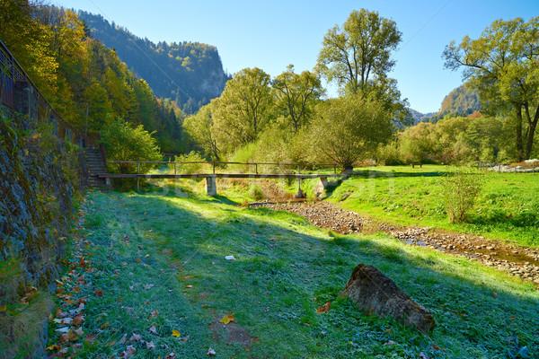 Foto d'archivio: Montagna · panorama · ponte · fiume · legno · foresta