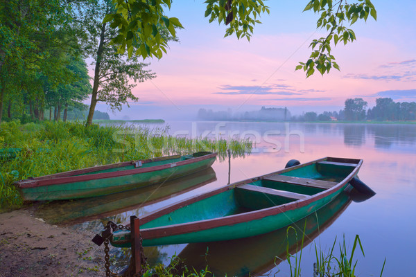 Two boats on the river. Foggy landscape. Stock photo © bogumil