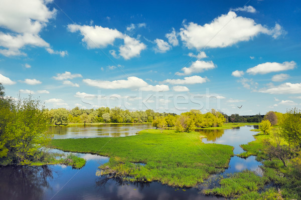 River flood waters background, Narew, Poland Stock photo © bogumil