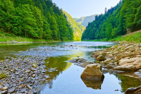 Rivière parc pierre frontière Pologne Slovaquie Photo stock © bogumil