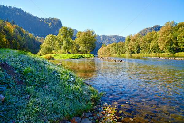 Mountain landscape with Dunajec river and frozen grass. Stock photo © bogumil