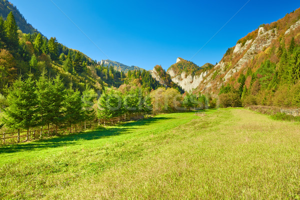 Güneşli manzara dağlar görmek Slovakya Stok fotoğraf © bogumil