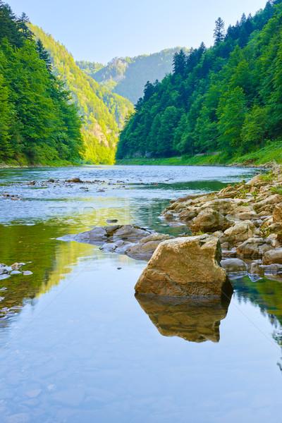 川 自然 リザーブ 石 国境 ポーランド ストックフォト © bogumil