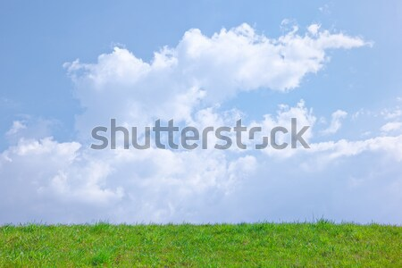 Sunny spring background with clouds on the blue sky  Stock photo © bogumil