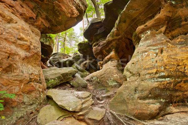 Beauty of Earth. The Hell Rocks near Nieklan, Poland. Stock photo © bogumil
