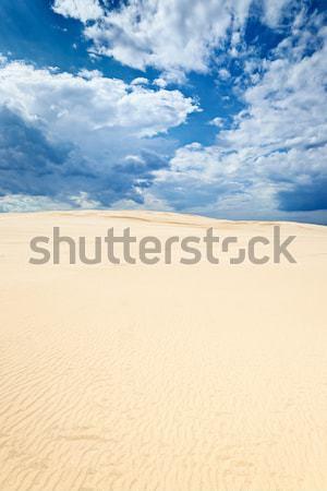 Nuages ciel bleu désert dune de sable sable parc Photo stock © bogumil