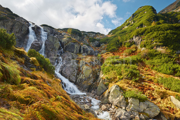 The Great Siklawa Waterfall. The High Tatra Mountains, Carpathians. Poland. Stock photo © bogumil