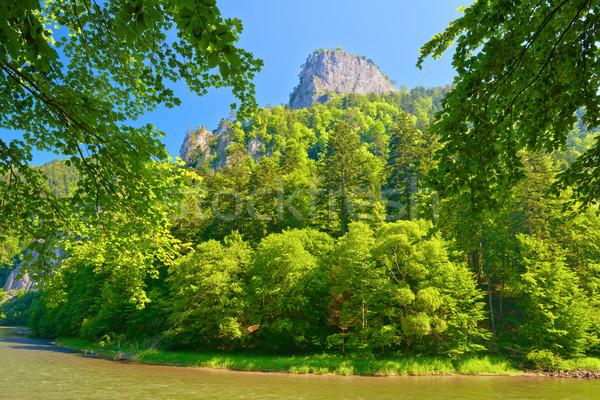 Montagna Polonia confine view primavera Foto d'archivio © bogumil