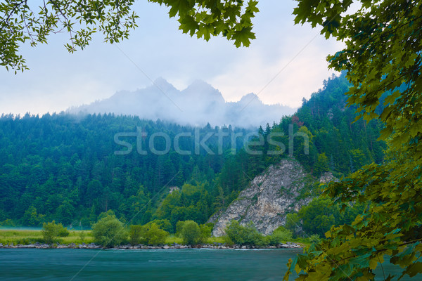 Foggy morning over The Dunajec River Gorge.  Stock photo © bogumil