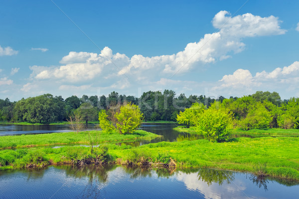 Landscape with flood waters of Narew river, Poland. Beautiful wa Stock photo © bogumil