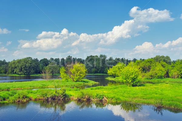 пейзаж наводнения реке Польша красивой Сток-фото © bogumil