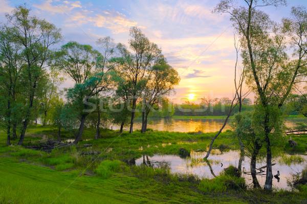 Foto d'archivio: Sunrise · fiume · Polonia · panorama · acqua · albero