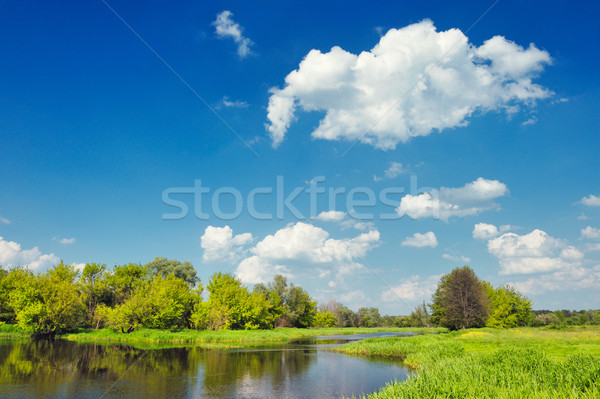 Landscape with flood waters of Narew river, Poland. Beautiful wallpaper. Stock photo © bogumil
