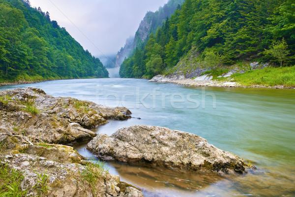 Stenen rivieroever bergen rivier Polen Slowakije Stockfoto © bogumil