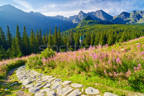 High Tatra Mountains trail landscape nature Carpathians Poland Stock photo © bogumil