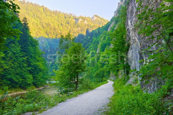 Trekking sentier rivière montagnes frontière Pologne Photo stock © bogumil