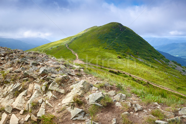 Park dağlar çim manzara manzara Stok fotoğraf © bogumil