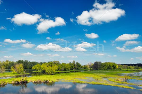 Nehir sel duvar kağıdı Polonya su ağaç Stok fotoğraf © bogumil