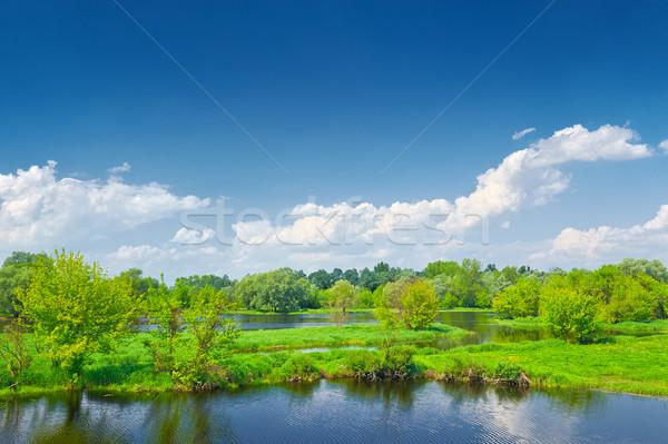 Printemps paysage rivière eau nuages forêt Photo stock © bogumil