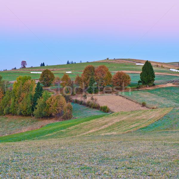 美しい 夜明け 風景 信じられない 空 自然 ストックフォト © bogumil