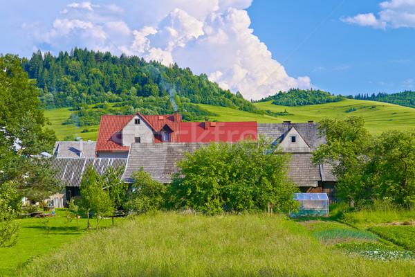 Evler dağlar ülke Polonya Slovakya sınır Stok fotoğraf © bogumil