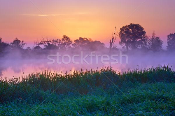 Gyönyörű hajnal folyó Lengyelország természet tartalék Stock fotó © bogumil