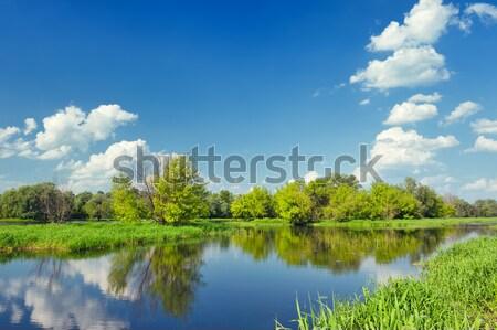 Sel nehir Polonya güzel duvar kağıdı su Stok fotoğraf © bogumil