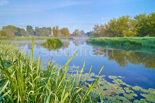 Paisagem rio belo água árvore grama Foto stock © bogumil