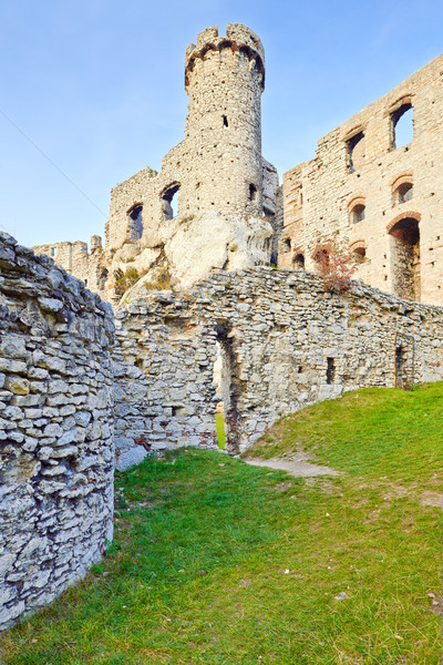Ruins of The Ogrodzieniec Castle in Poland.  Stock photo © bogumil